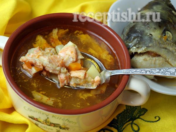 Рыбный суп из головы и хребтов семги, форели, лосося